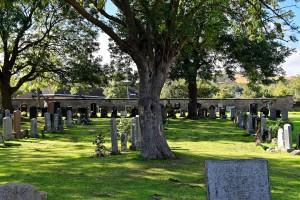 cemetery-959414_1920
